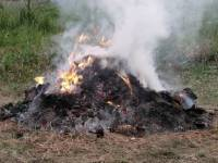 Figyelem! Változtak az avar és a kerti hulladék égetésének szabályai Budakeszin!